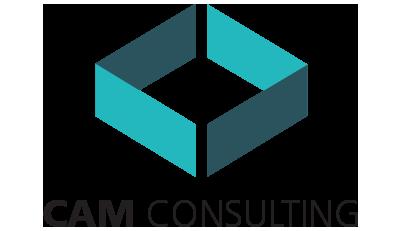CAM Consulting Ltd.
